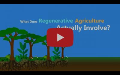 Wat is regeneratieve landbouw?